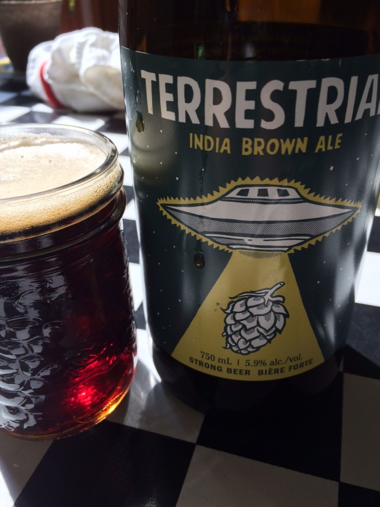 Terrestrial India Brown Ale from Wellington Brewery